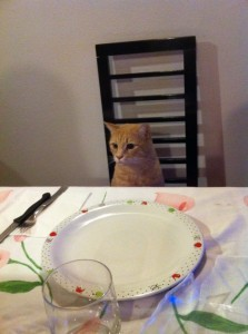 1tigro a tavola